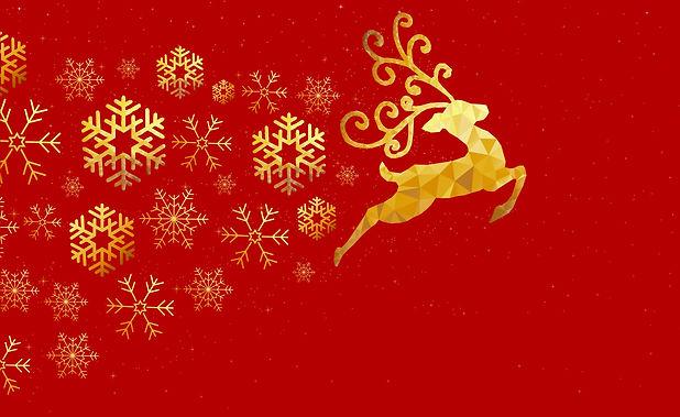 Ornament 2c.jpg