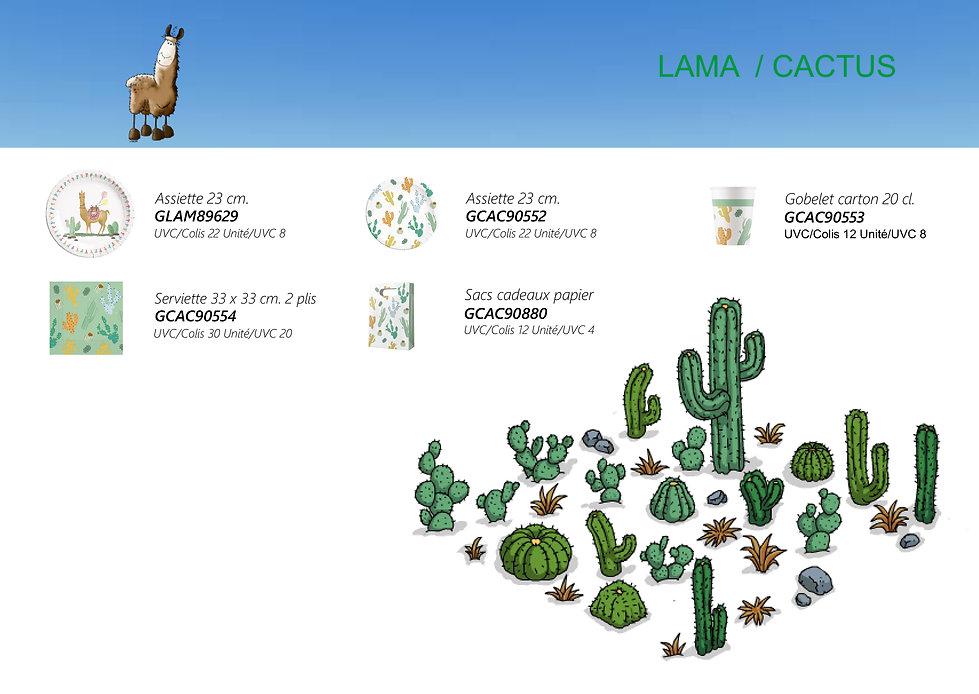 lama cactus.jpg
