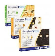 stronghold plus.jpg