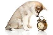 De tijd staat even stil