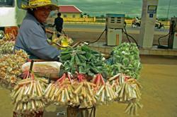 Sales woman Cambodia