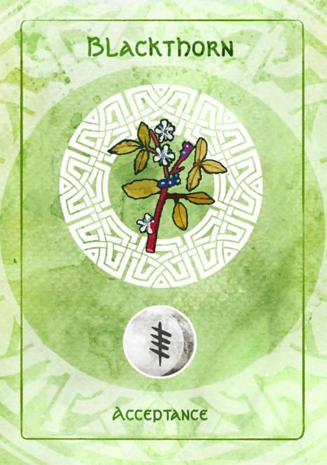 Blackthorn card.png