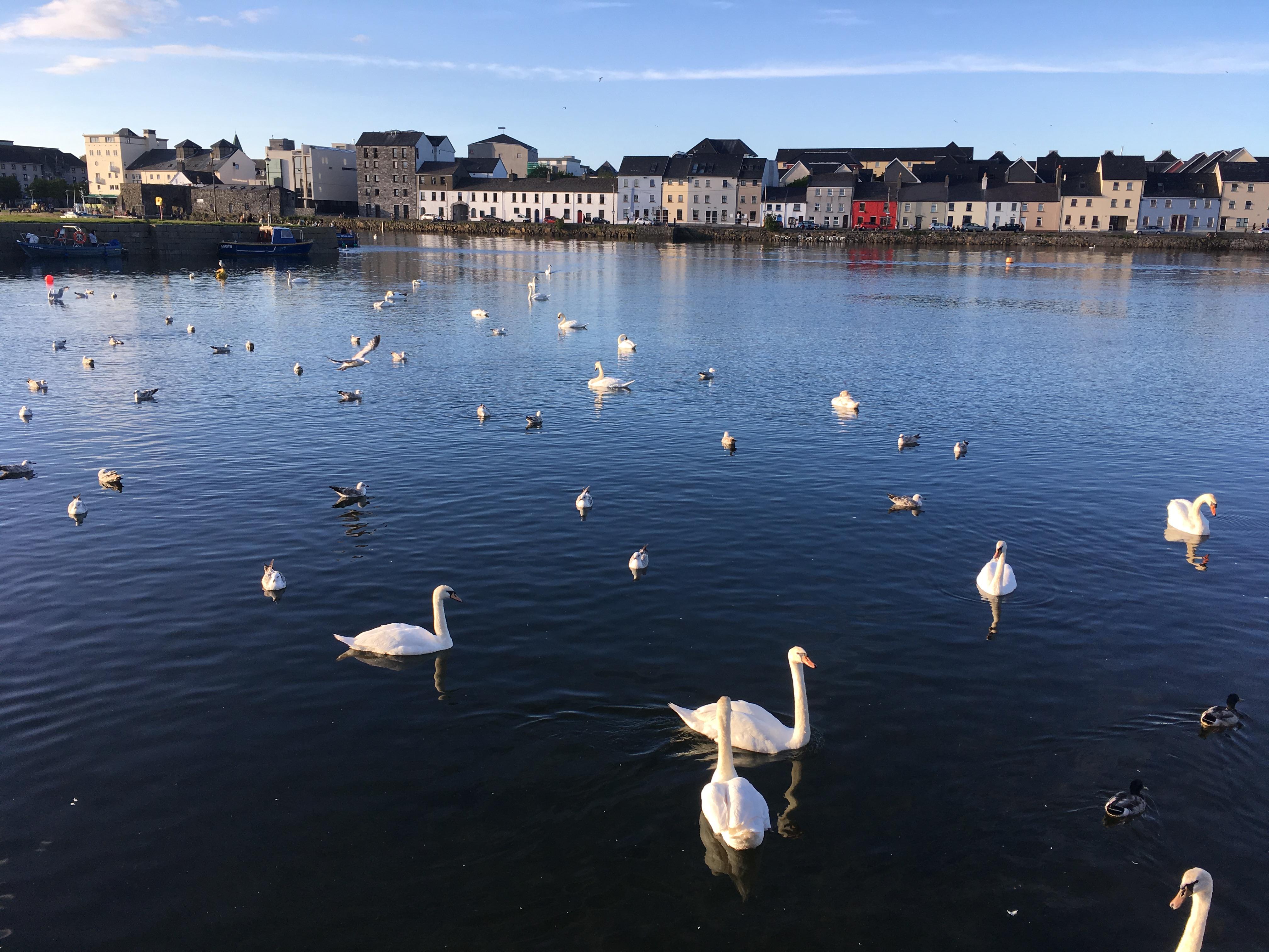 Claddagh & Long Walk, Galway