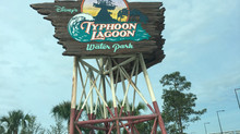 Park Spotlight: Typhoon Lagoon