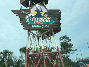 Park Spotlight: Typhoon Lagoon