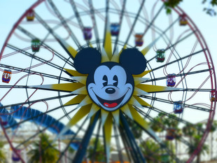Park Spotlight: Disney California Adventure Part 2
