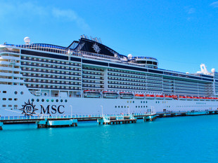 MSC Booking Category Breakdown