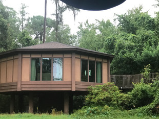 Resort Spotlight:  Treehouse Villas at Saratoga Springs