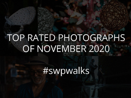 Top Rated Photographs of November  2020