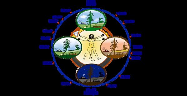 1200px-Biological_clock_human.svg.png