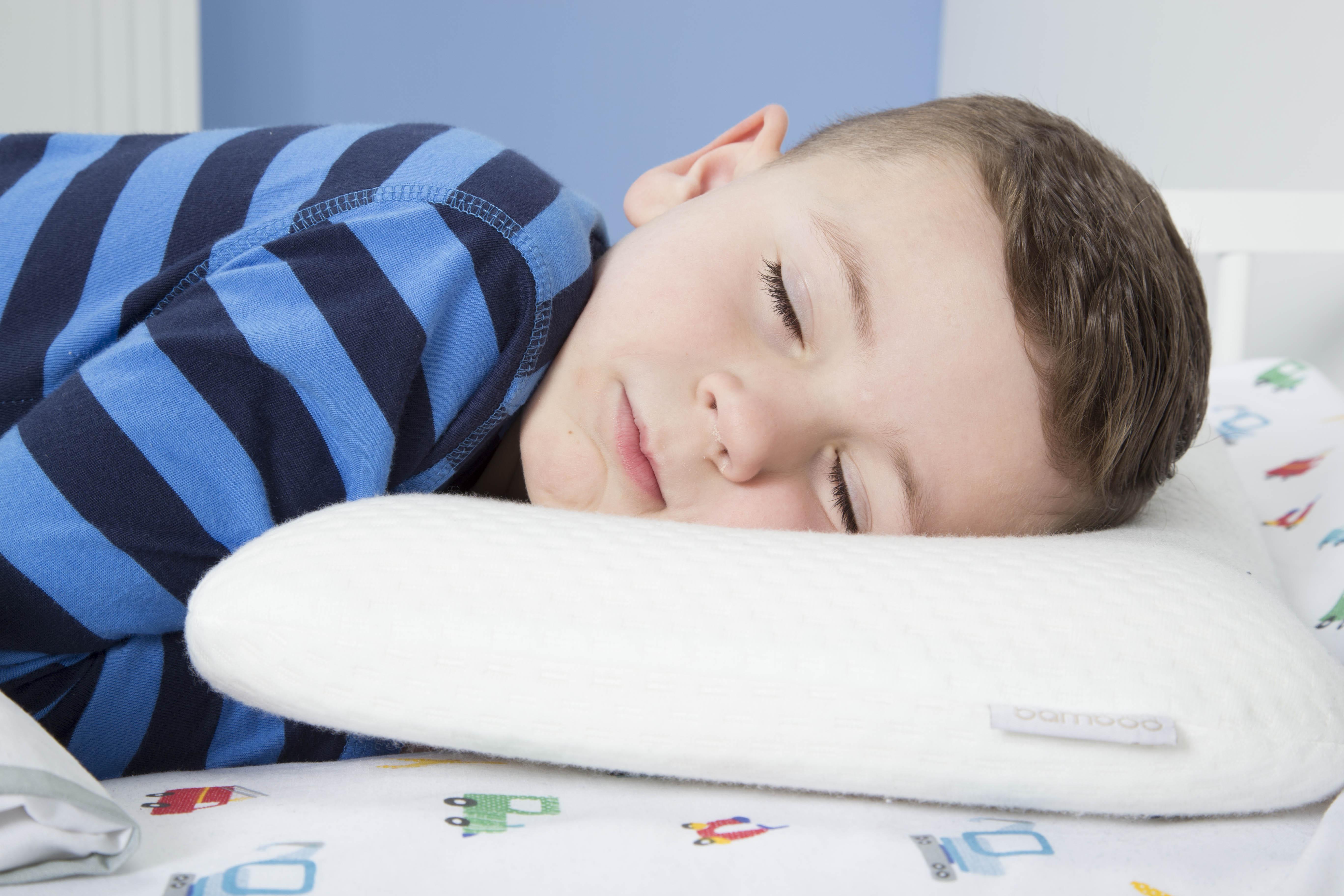 Pillow - bob 1
