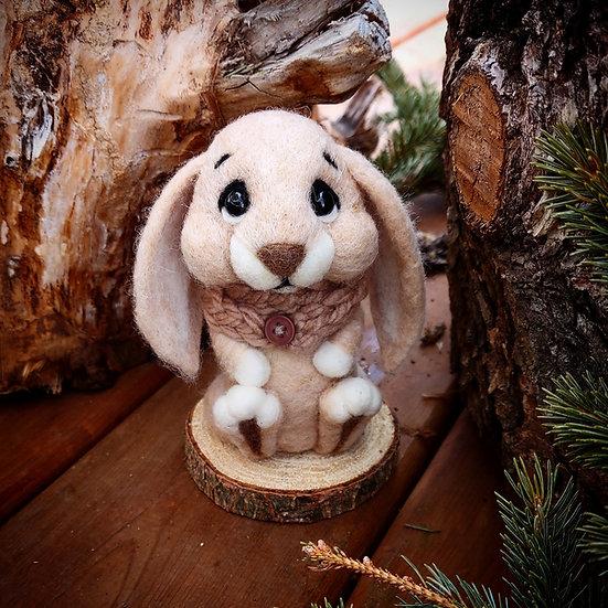 Basil the Bunny