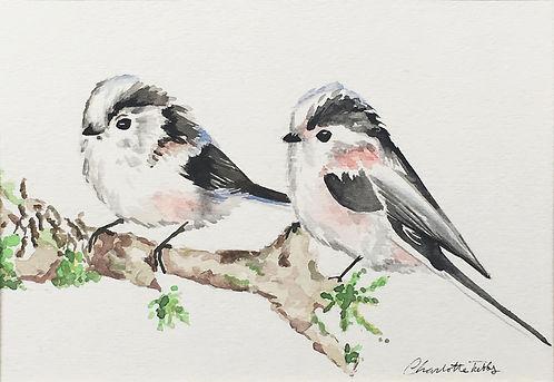 Tubbs_twobirds1.jpg