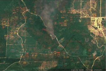 scene of the crime - palm oil indonesia 3