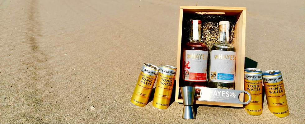 HAYES GIN CARE PACK Banner 4.png