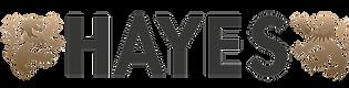 HAYES_logo_gray_plain_small_web.png