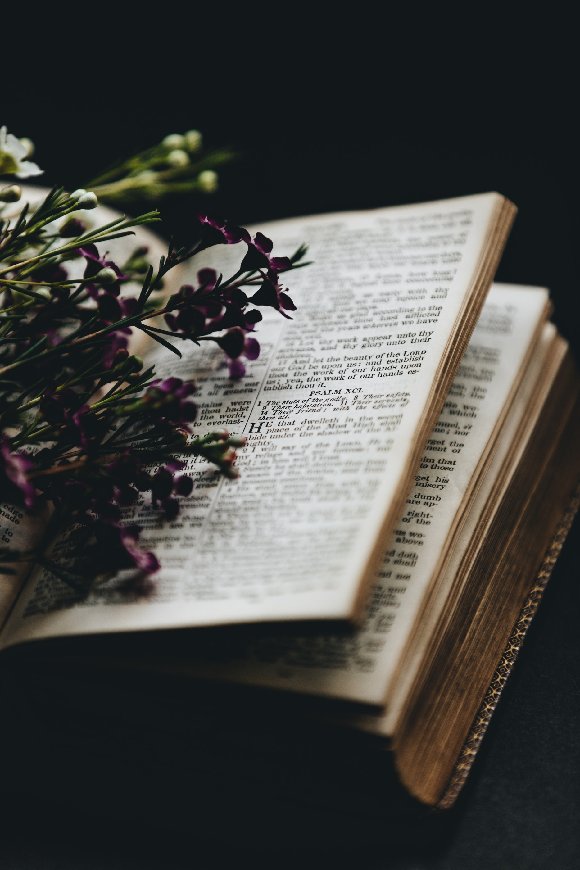 Psalms with purple flower