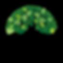 big tree with deep roots symbolising deeper leadership