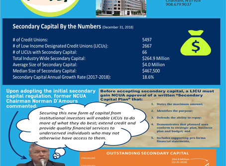 Understanding Secondary Capital for Credit Unions