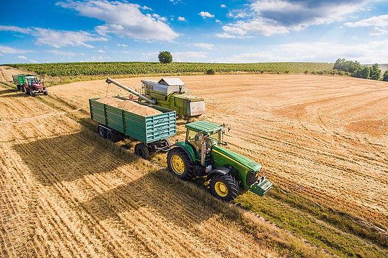 combine-harvester-pouring-grain-into-tra