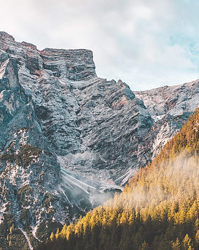 mountains-and-forest_free_stock_photos_p