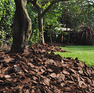Pine Bark Mulch - Large