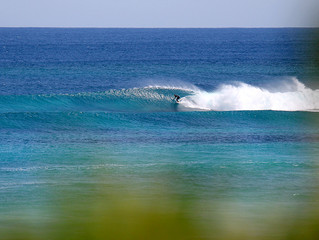 Surf 'til you drop this week.