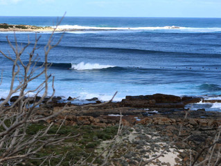 Building Swell