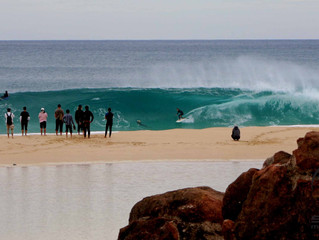 Heavin' beach breaks, broken boards, shark sirens and tiger snakes. It was on!