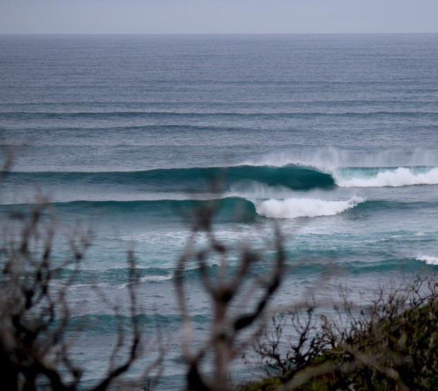 Grunters Margaret River surf