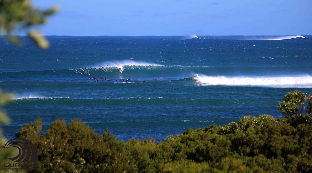 north point summer surf