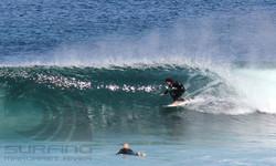 surfing margaret river, barrel.