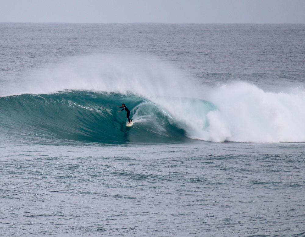 Grunters surf