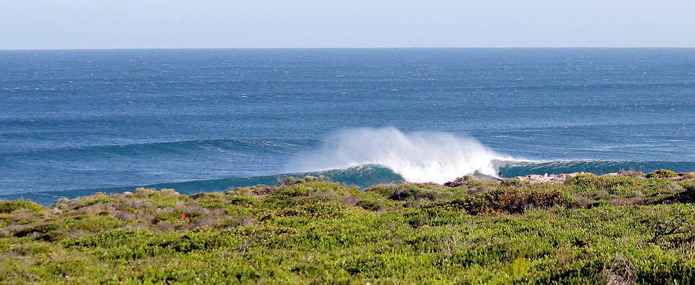 Surfing margaret Rivberv Ellensbrook Bombie