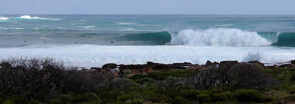 surf in western australia