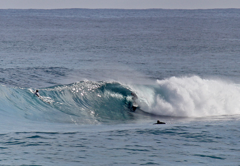 barrel, clean conditions, grunters