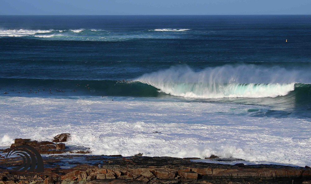 gracetown big surf