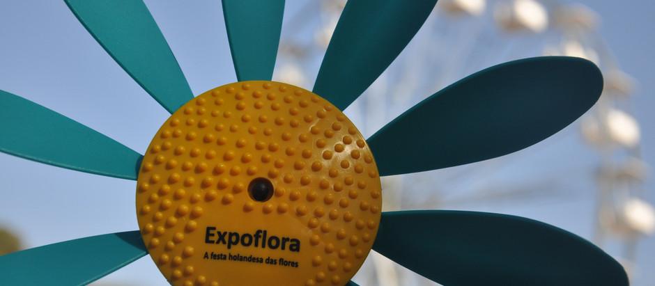Do meu observatório da Expoflora