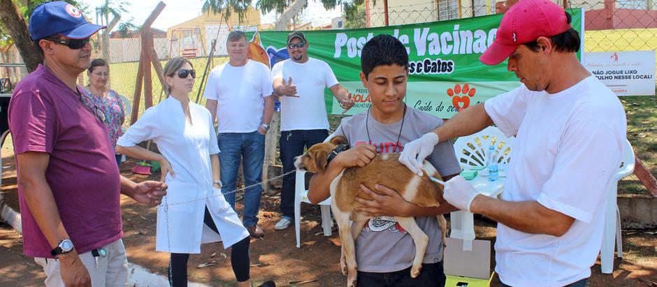 Vacinação contra raiva animal em Holambra será de 19 a 26 de agosto