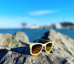 Sunglasses Pic 4