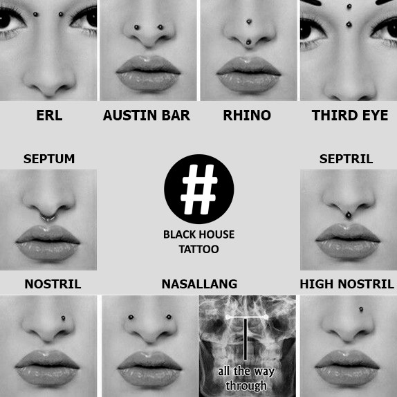druhy-piercingu-do-nosu-black-house-tattoo.jpg