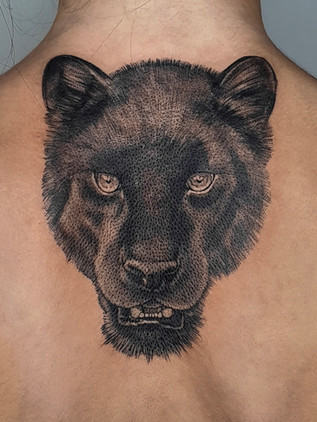 panther on back - black and white tattoo - black house tattoo prague