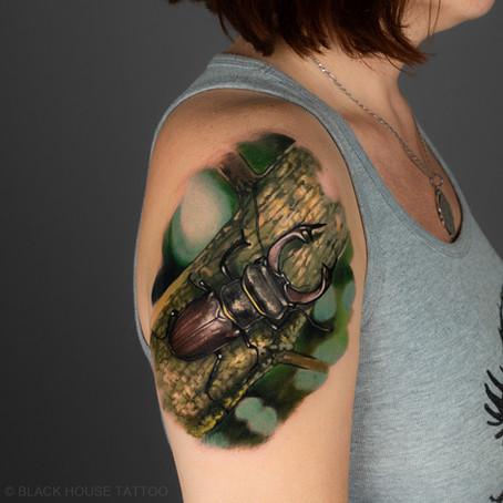 Vyznam tetování Brouk