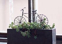 自転車04.jpg