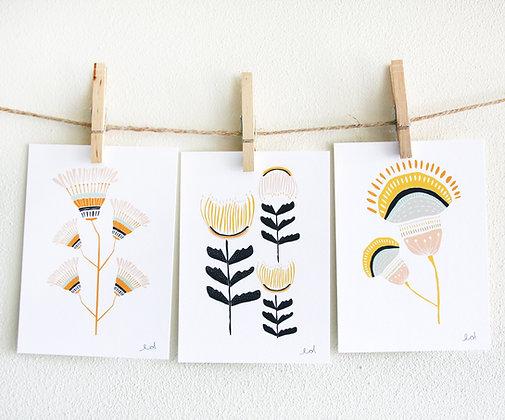 Desert Flowers Print Set