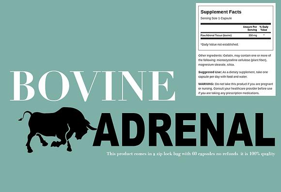 Bovine Adrenal Glandular