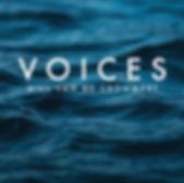 Voices_Album Artwork.jpg