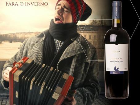Vinhos para o inverno - Cellaro Micina IGT