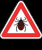 Panneau-Danger-HalteLyme.png