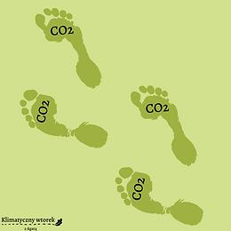 Poczucie winy nie powstrzyma zmian klimatu -jak rozsądnie myśleć o swoim śladzie węglowym i jego redukowaniu? ONLINE